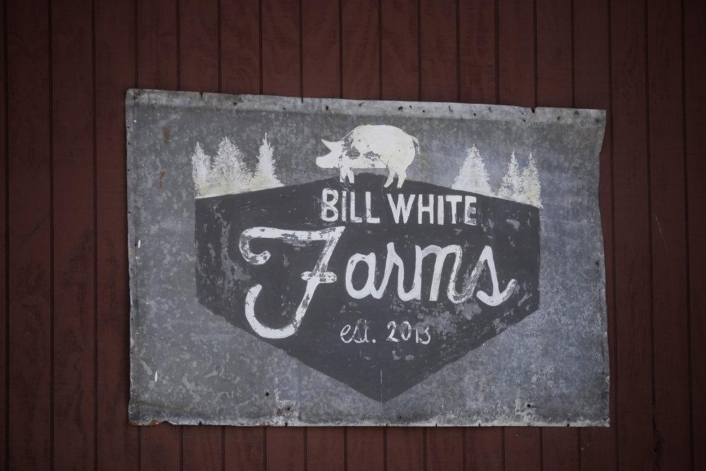 BillWhiteFarmsCiderFest16-039.jpg