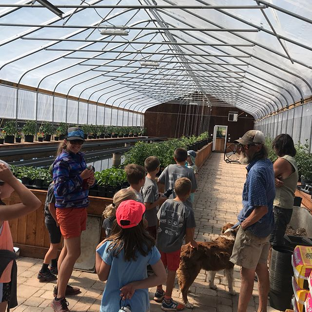 What an awesome first day hosting #FarmerFridays for @wesaveland camps!  We got to show the kiddos how we grow and raise our plants and animals 👨🏽‍🌾👩🏻‍🌾