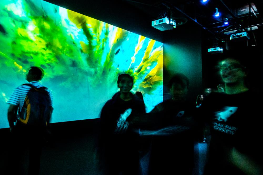 Walking Through the Kelp Forest Exhibit