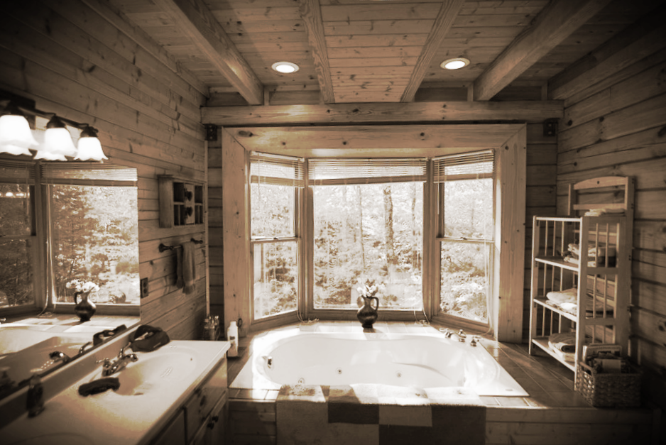 Laurel Fork Cabin Amenities