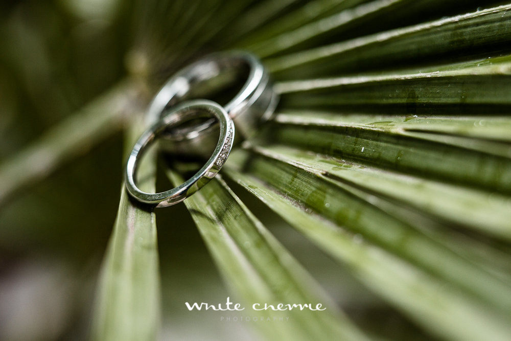 White Cherrie, Scottish, Natural, Wedding Photographer, Lisa & Tam preview-2.jpg