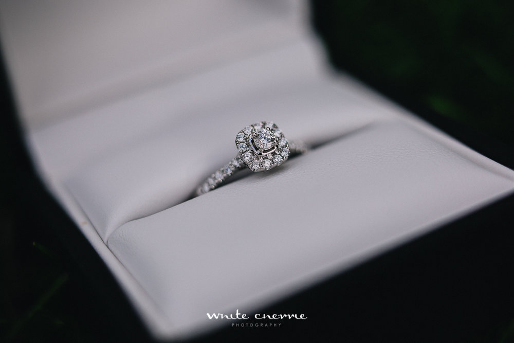 White Cherrie, Scottish, Natural, Wedding Photographer, Lee's Proposal preview-5.jpg