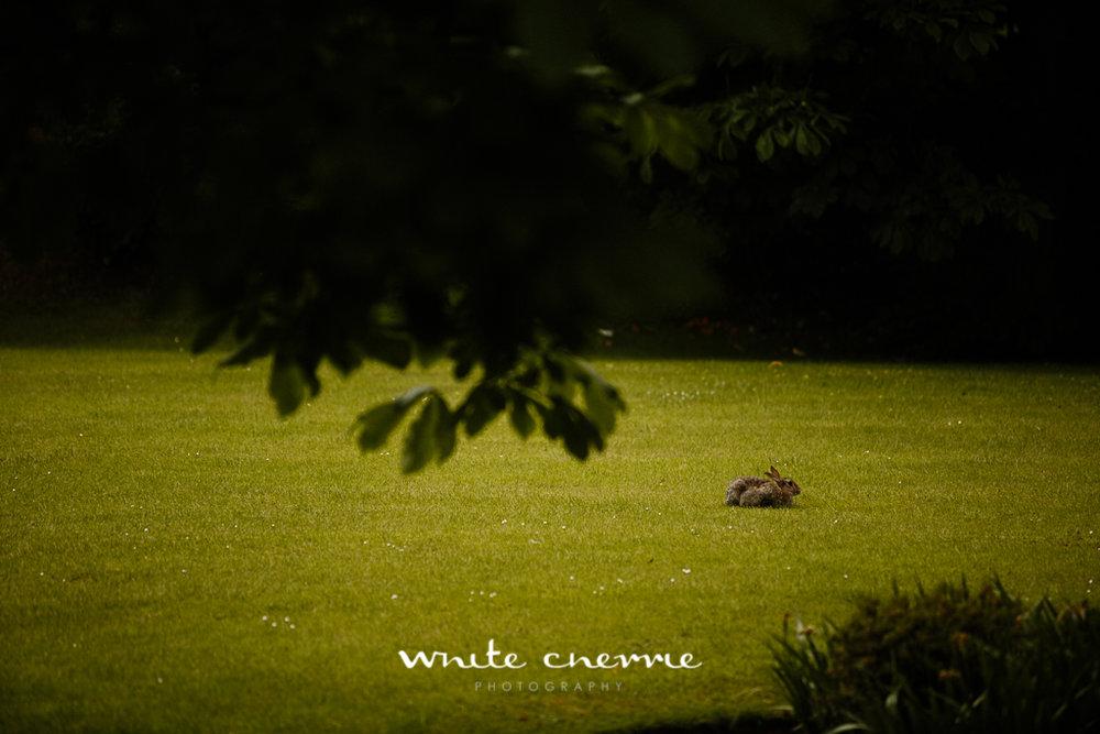 White Cherrie, Edinburgh, Natural, Wedding Photographer, Lara & James previews-6.jpg