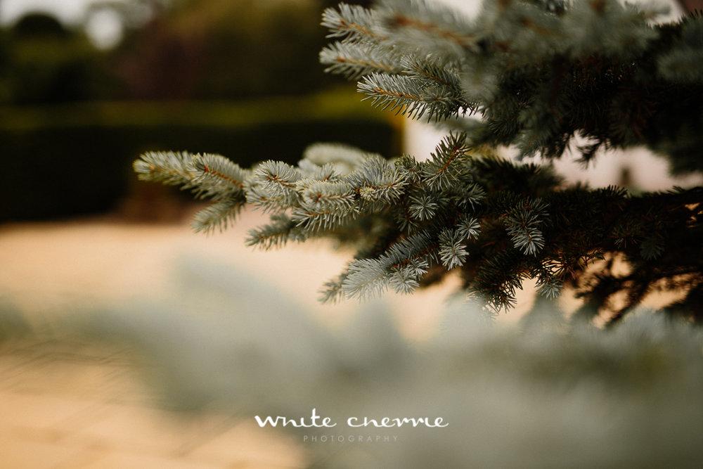 White Cherrie, Edinburgh, Natural, Wedding Photographer, Linsay & Craig previews-39.jpg