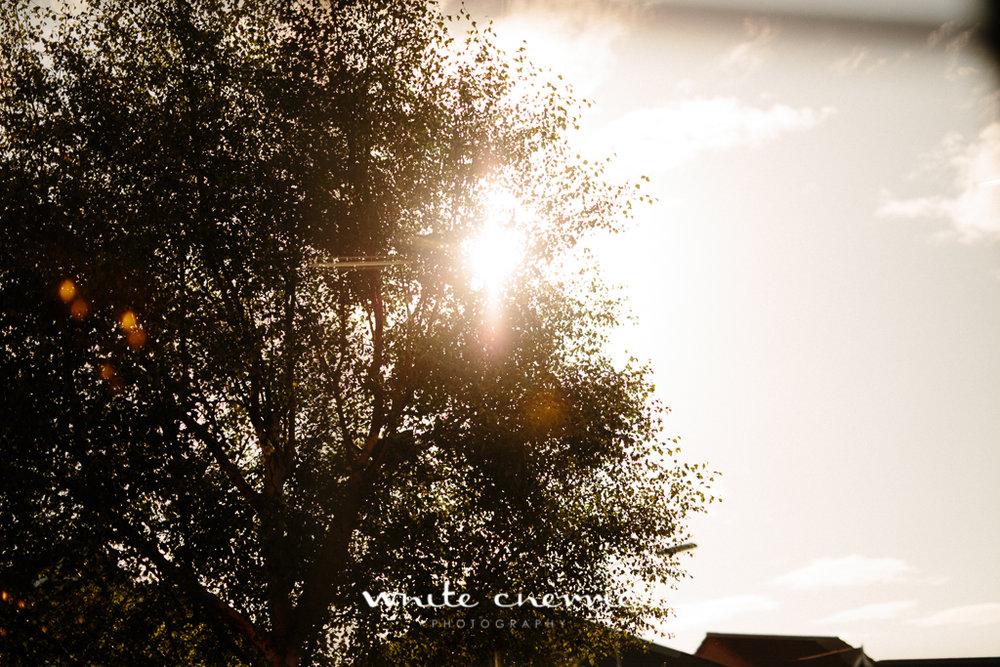 White Cherrie, Edinburgh, Natural, Wedding Photographer, Lauren & Terry previews-1.jpg