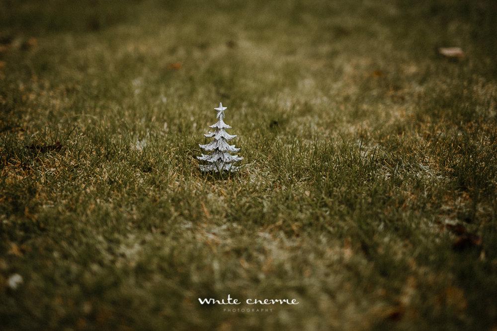 White Cherrie - Carli & Jamie - Previews-1.jpg