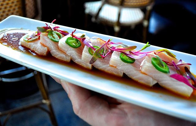 Wipe your drool. 👅💦#mouthwatering #sushi  #foodgasm #rawbar #canalclub #venicebeach
