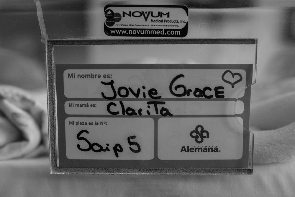 Jovie-1-10.jpg