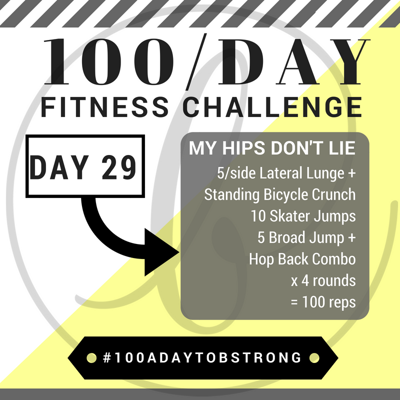 100aday29.png