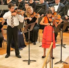 240_delcompare.violins.jpg