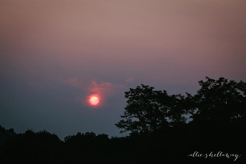 2014-08-09_0001
