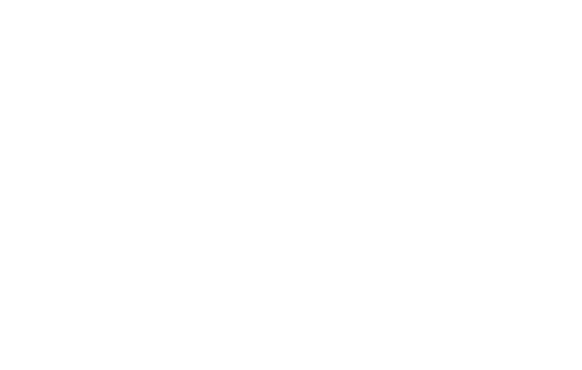 Travis Greisler | Director