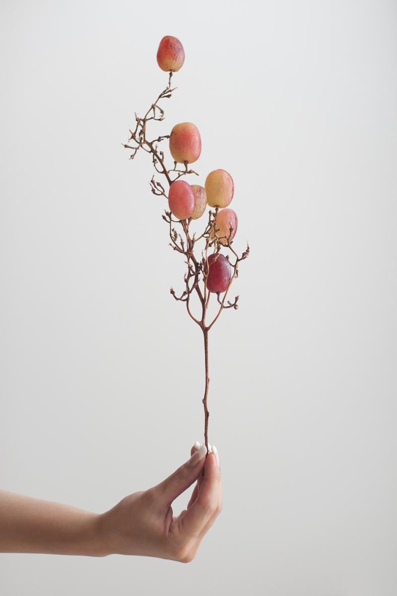Untitled (2012)