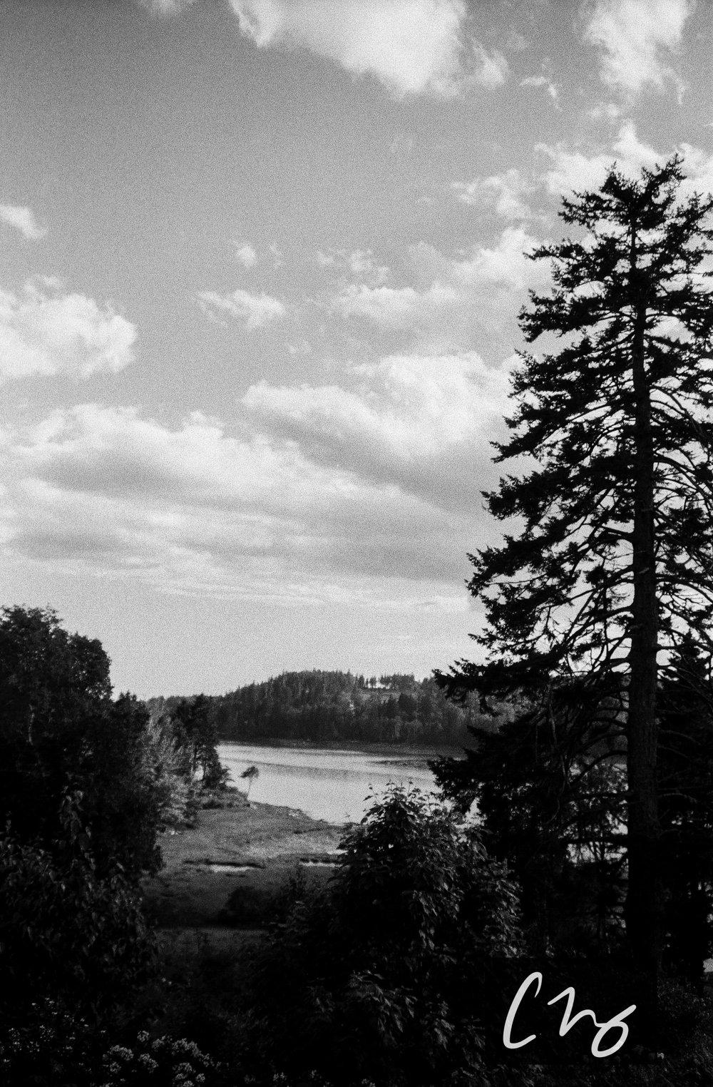 Wooden Islands-4-2.jpg