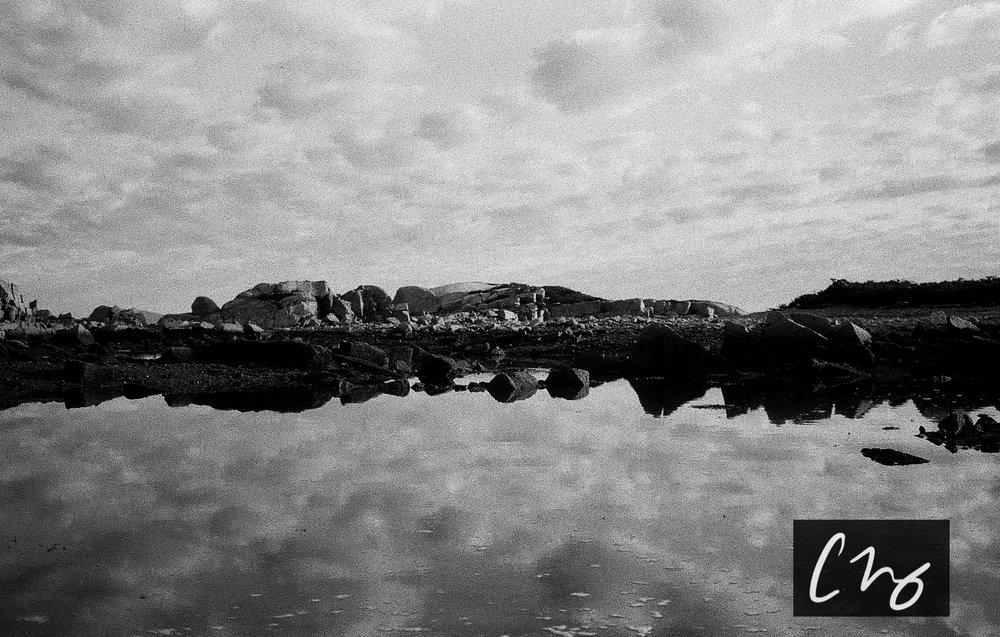 Wooden Islands-7-2.jpg