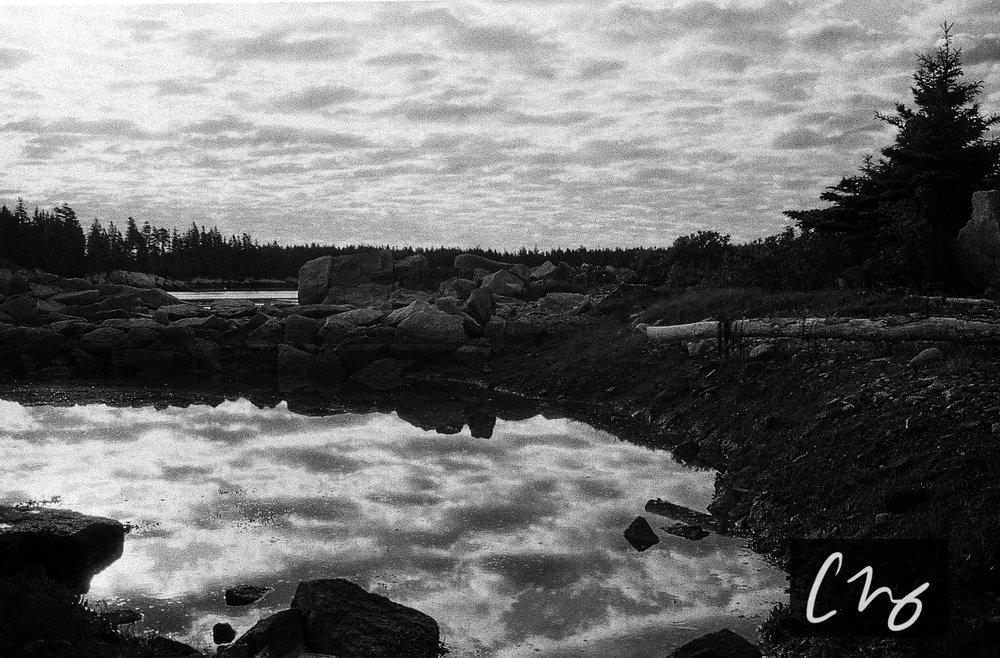 Wooden Islands-8-2.jpg