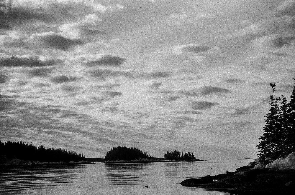 Wooden Islands-1-14.jpg