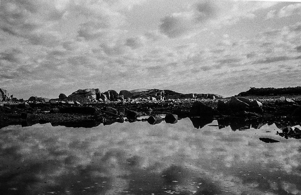 Wooden Islands-1-13.jpg