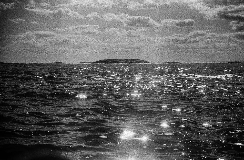 Wooden Islands-1.jpg