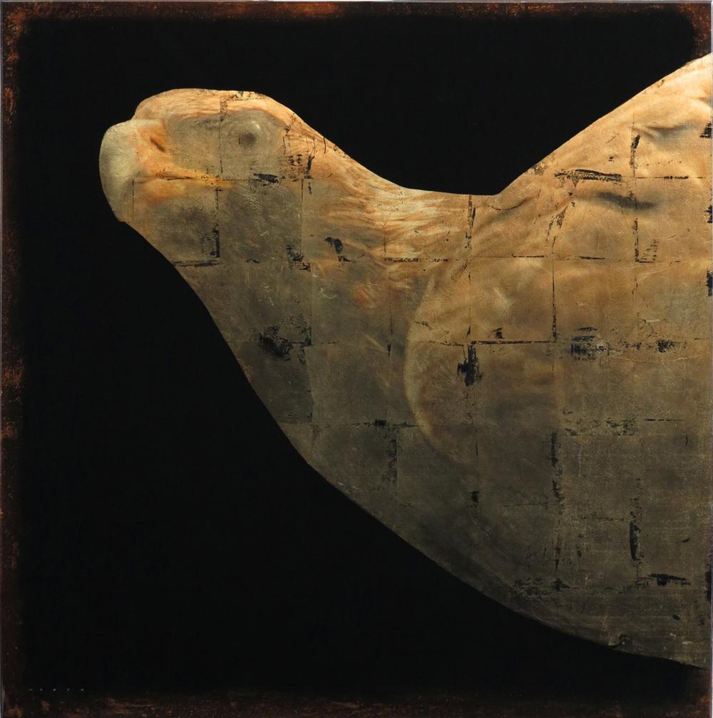 GOLDEN EAGLE, 48 X 48