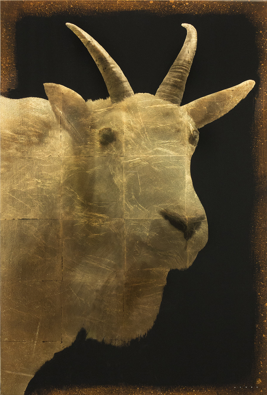 MOUNTAIN GOAT, 36 X 24