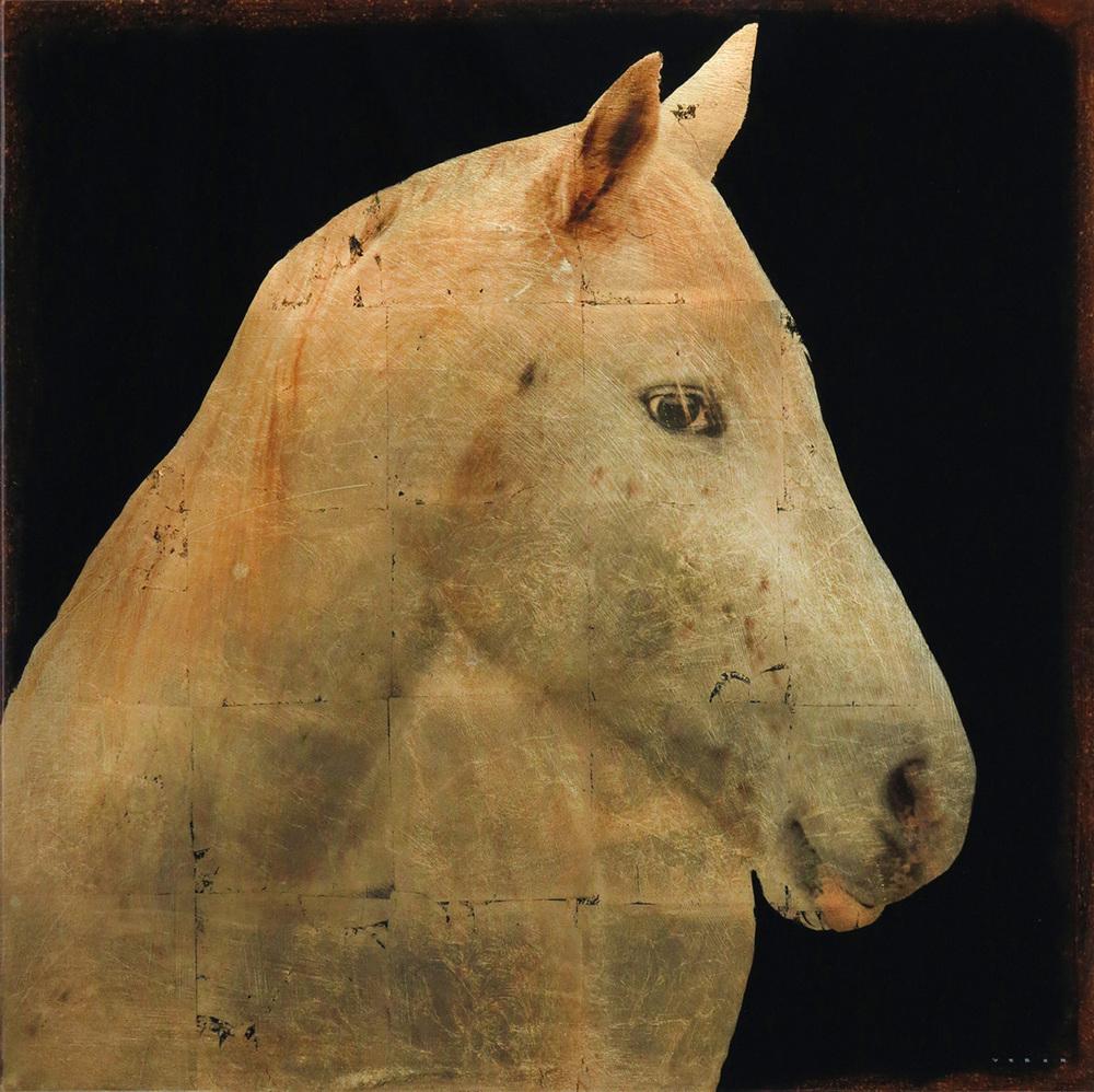 WHITE HORSE, 30 X 30