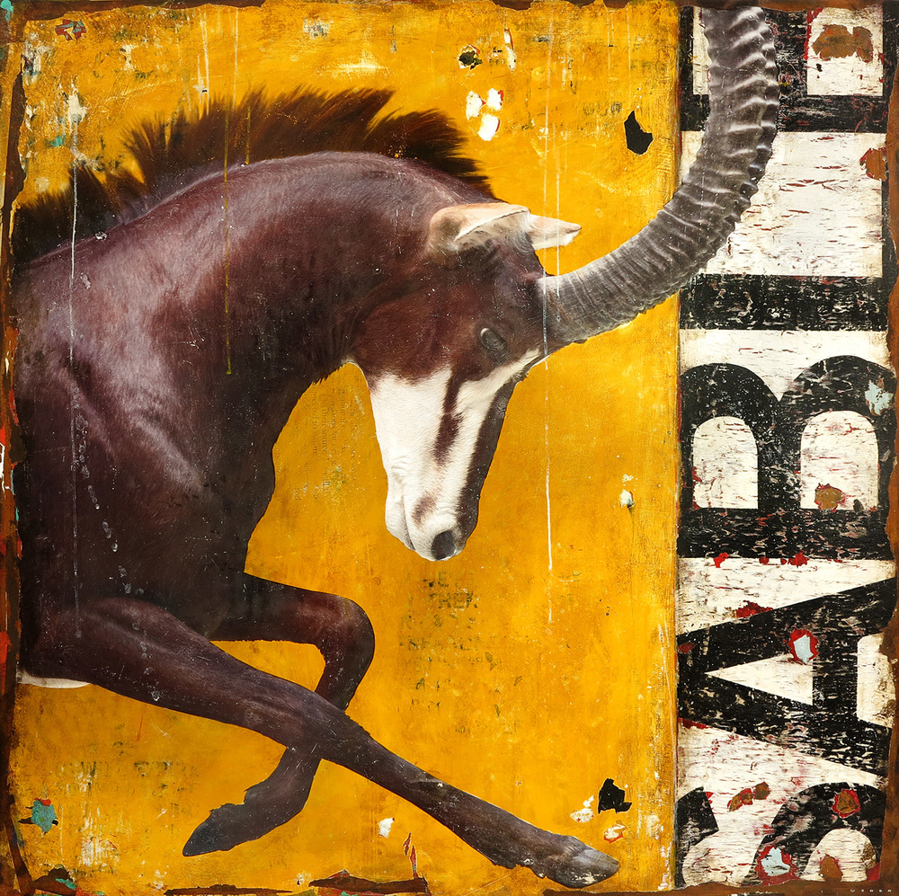 REARED SABLE, 48 X 48, SOLD