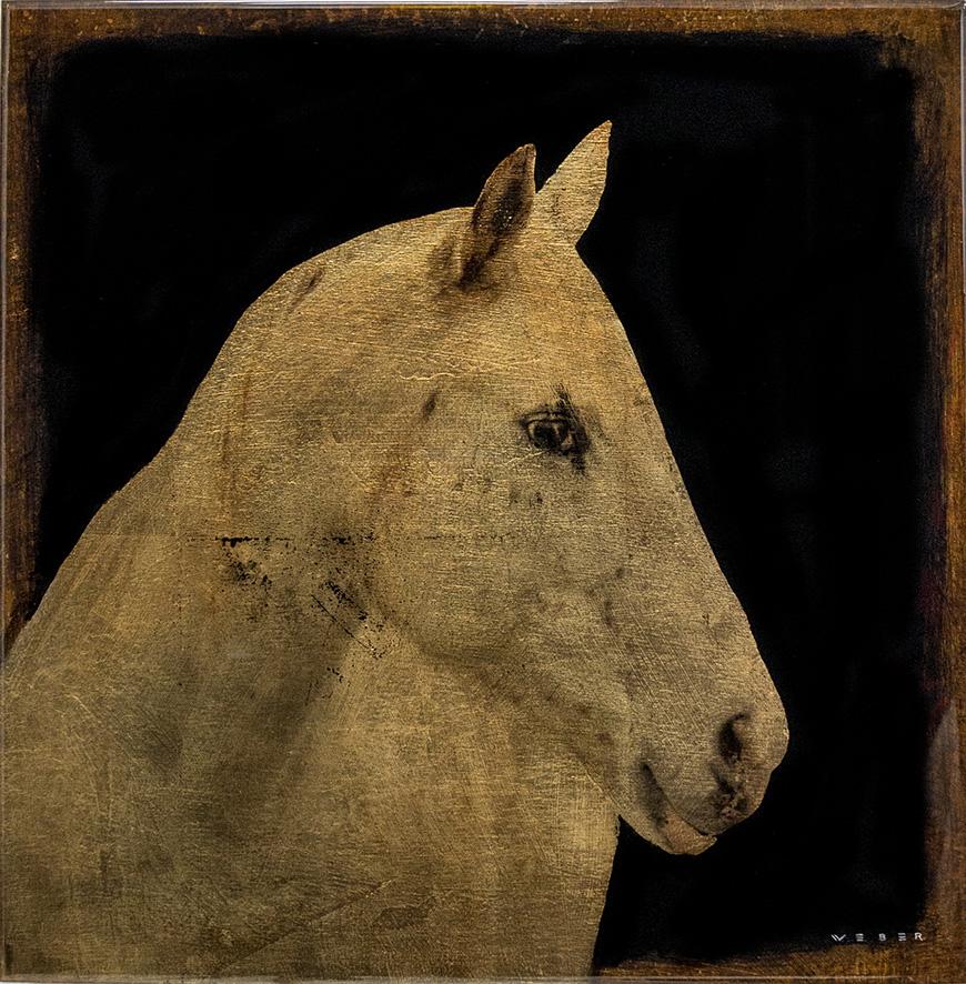 WHITE HORSE, 12 X 12