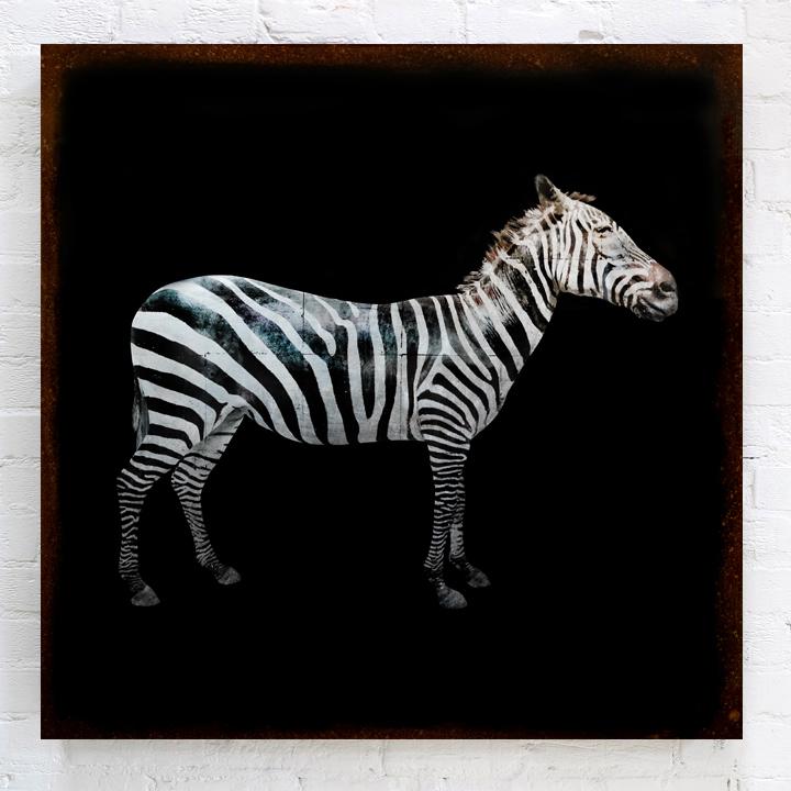Zebra Silver BRICK.jpg