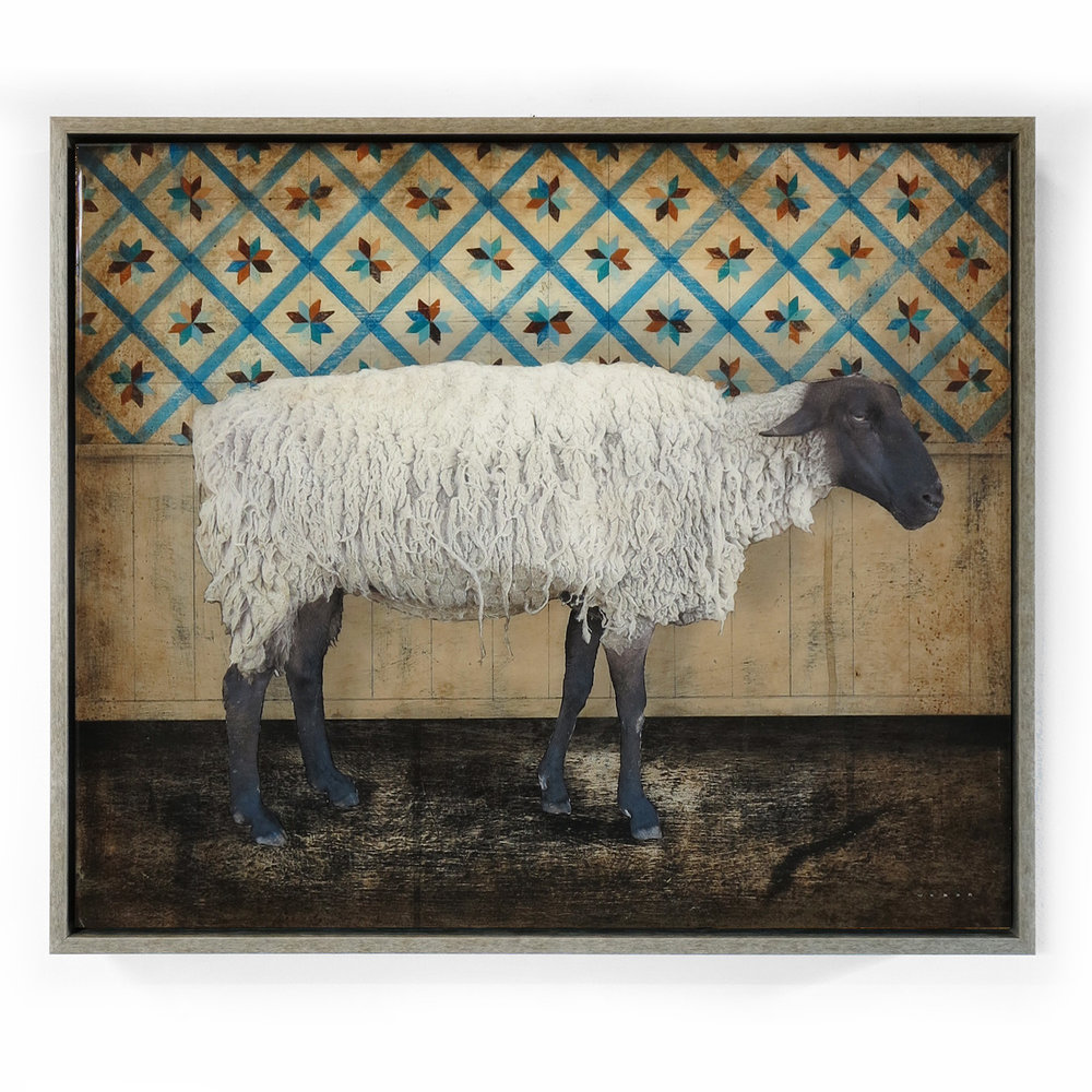 COUNTING SHEEP, 25 X 21