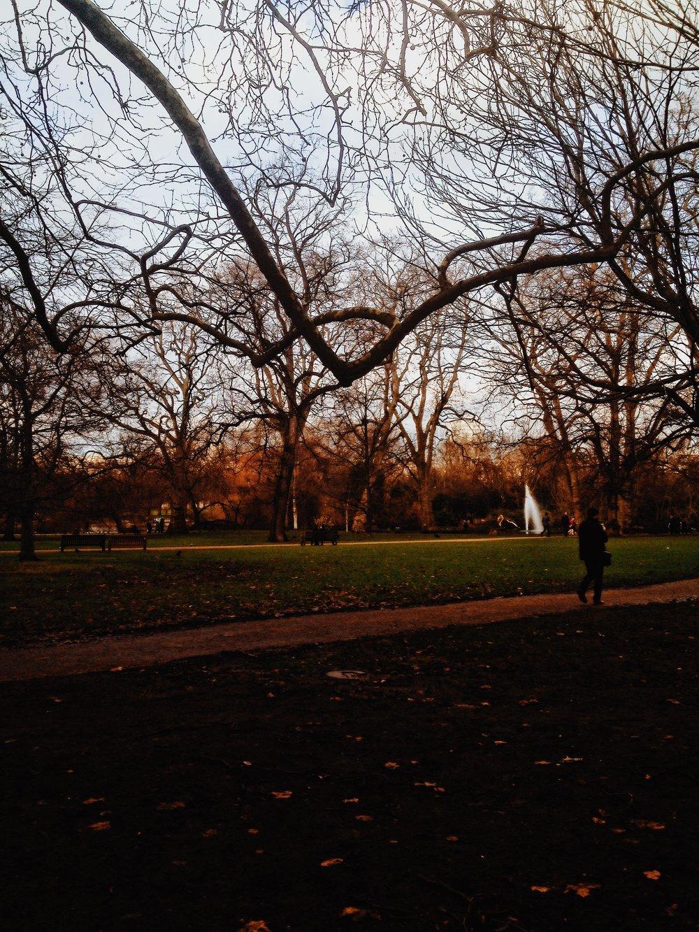 Morning walks in  Hyde Park