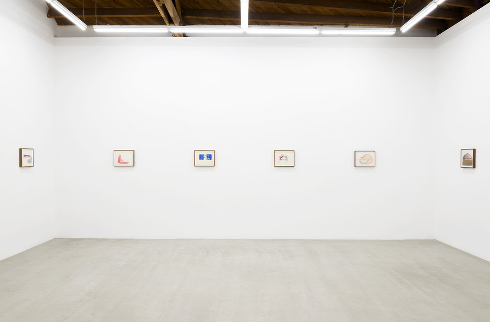 Installation view of Joan Snyder works on paper