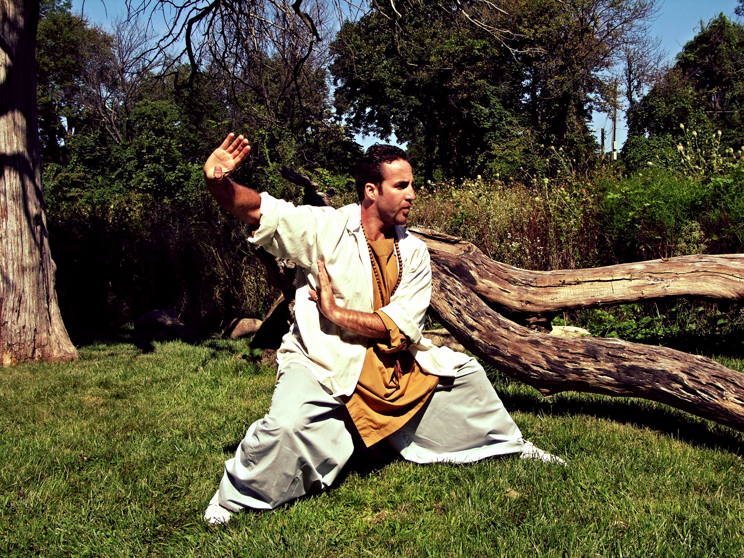 49e3c8770 Tai Chi Chuan — authentic shaolin kung fu
