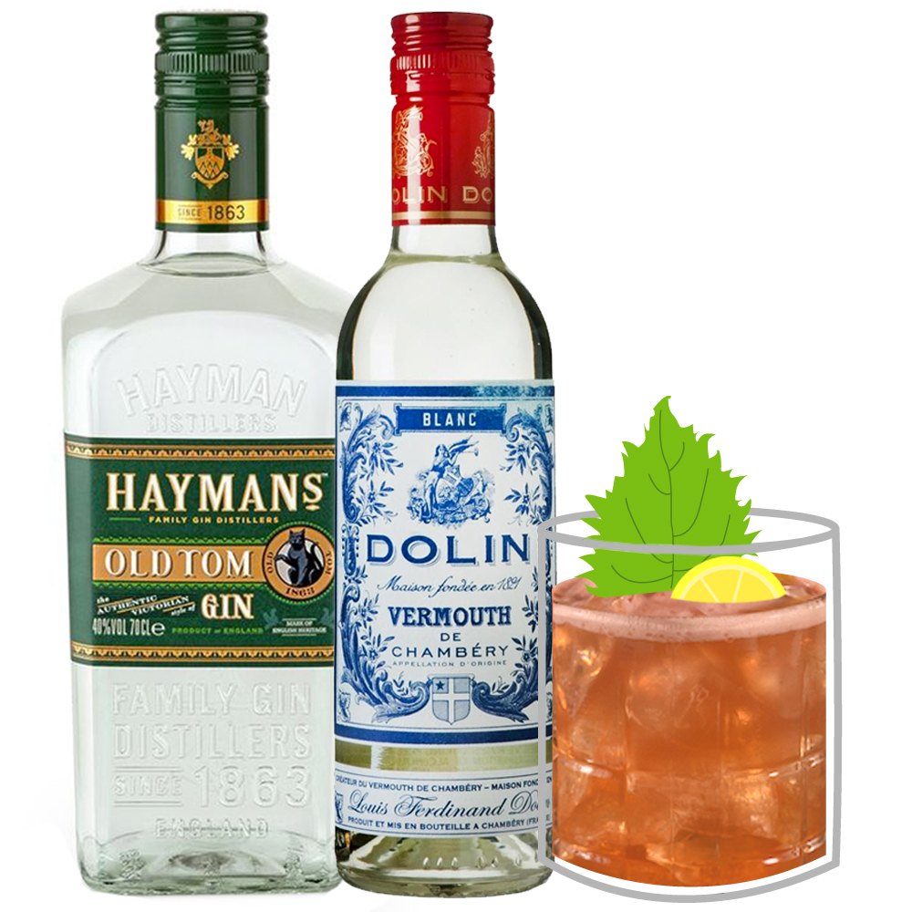 Spice-Trader-Classic-Cocktail-Gin-Vermouth.jpg