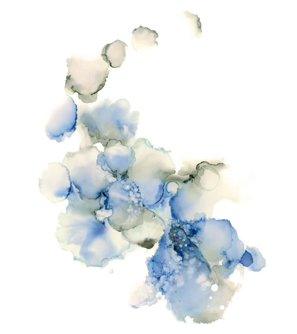Blue Flowers_sm.jpg