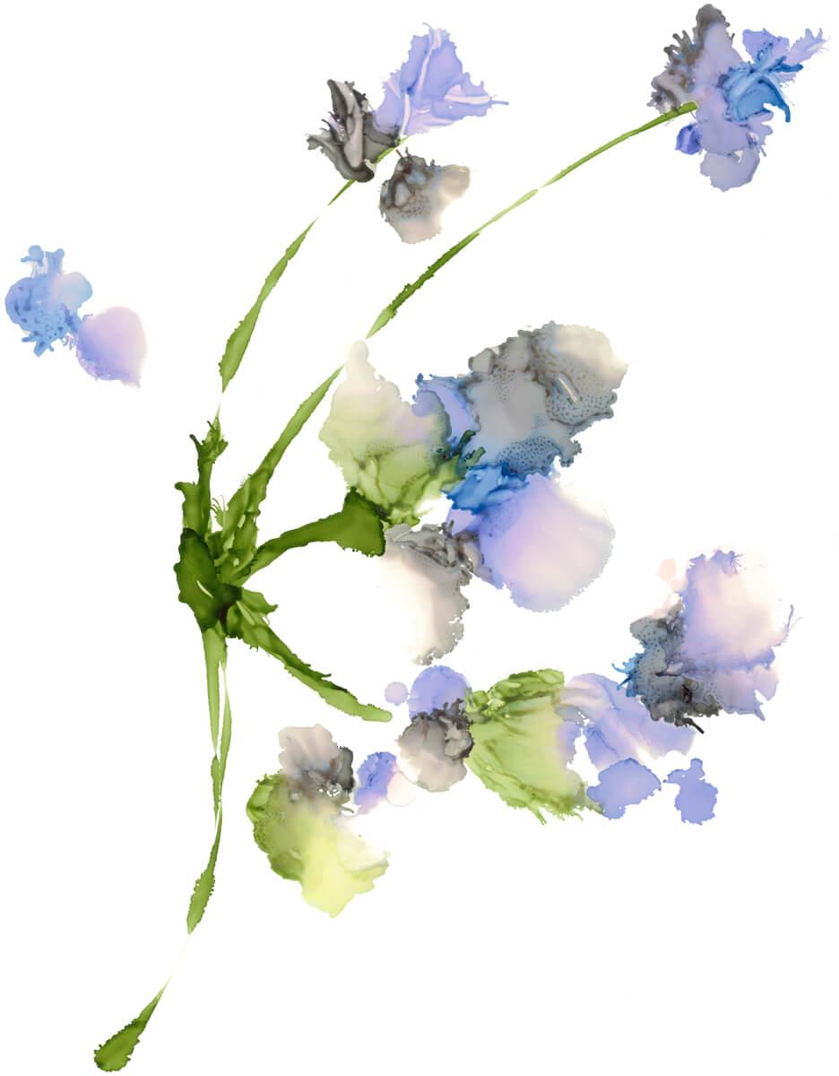 Purple Flowers_sm.jpg