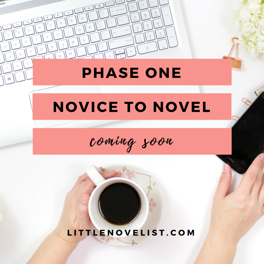 novice to novel one coming soon.png