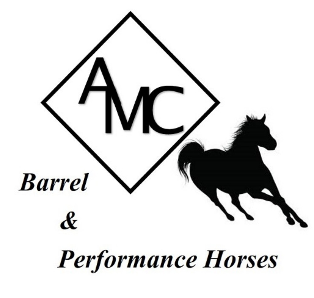 AMC BPH Logo new Res.jpg