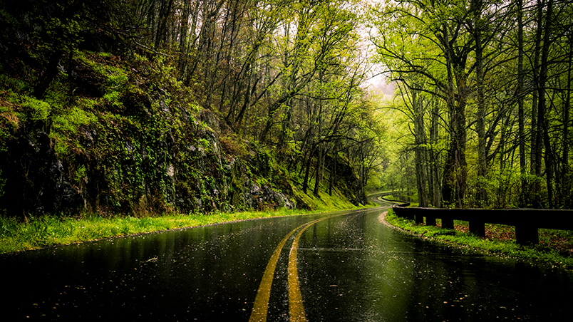 Blue Ridge Parkway In the Rain