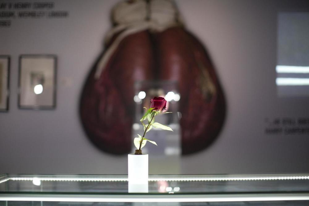 "A flower placed on display as a tribute to the life of heavyweight boxer Muhammad Ali at the ""I Am The Greatest, Muhammad Ali"" exhibition at the O2 arena, which hosts high profile boxing fights in London, on June 4. Ali, the magnificent heavyweight champion whose fast fists and irrepressible personality transcended sports and captivated the world, died according to a statement released Friday by his family. He was 74. (Matt Dunham/Associated Press)"
