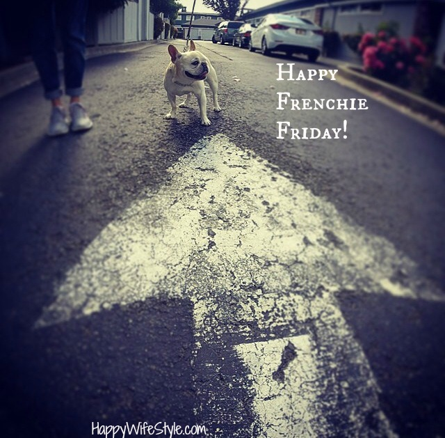 arrow-frenchiefriday