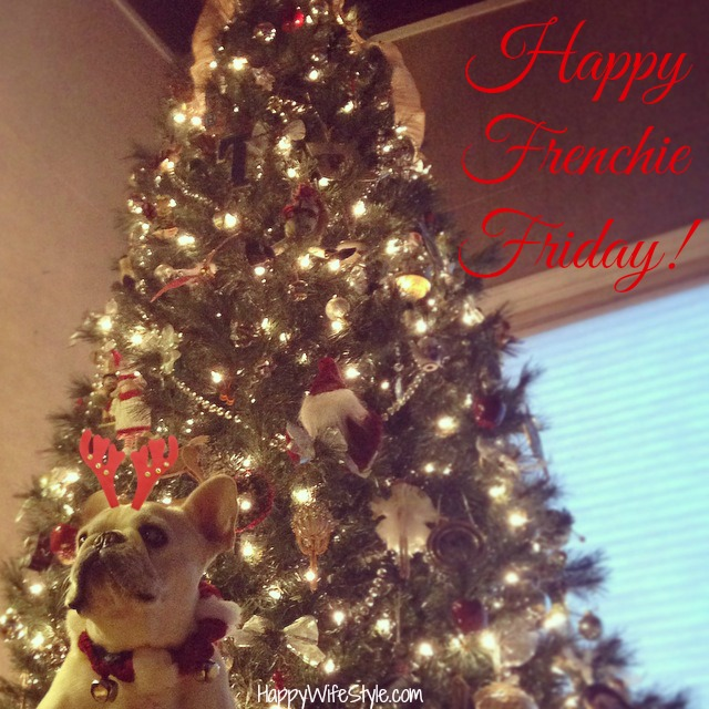 X-Mas-Frenchie-Friday