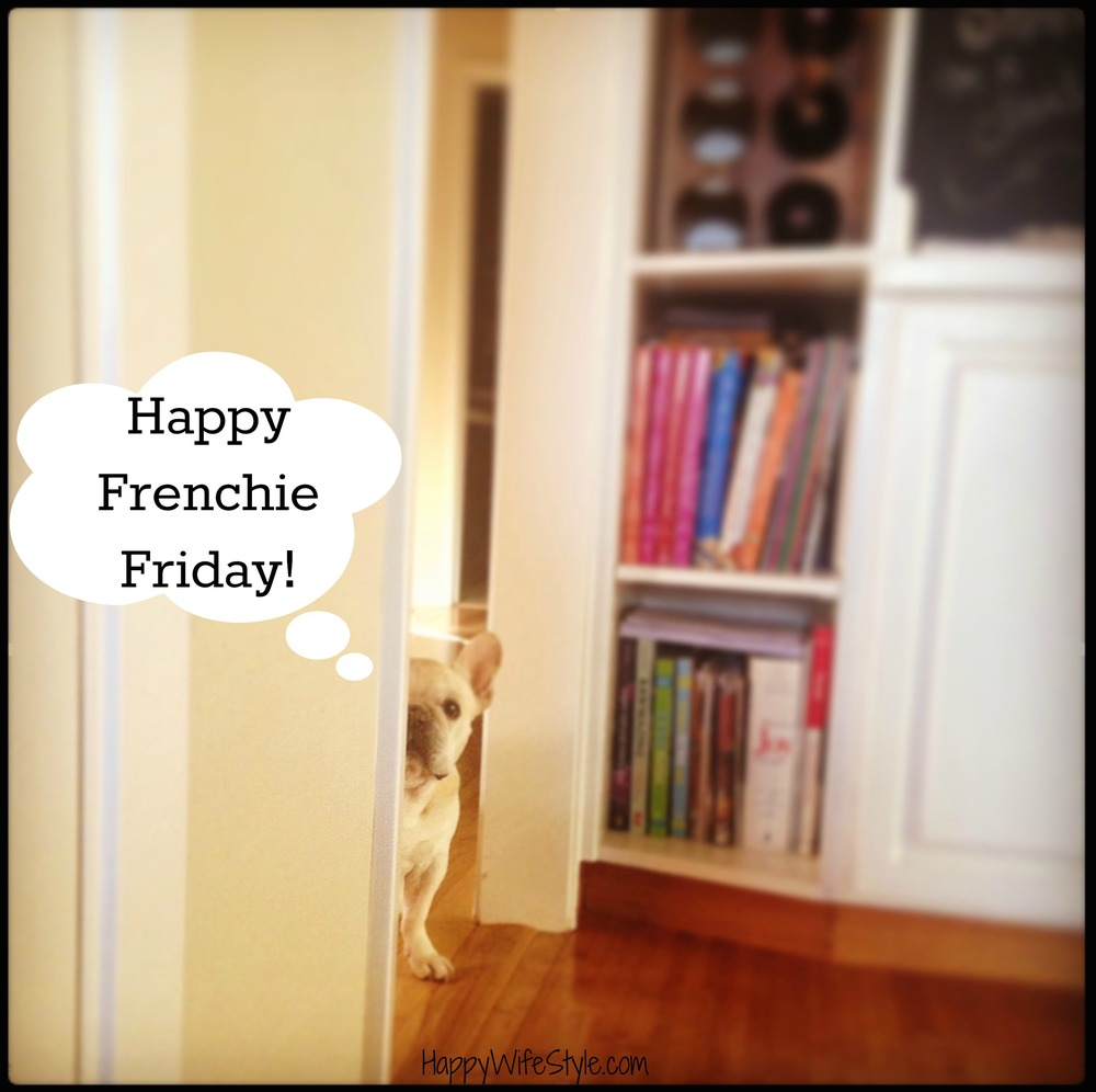 frenchie-friday