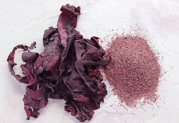 Dulse in whole flake and powder forms