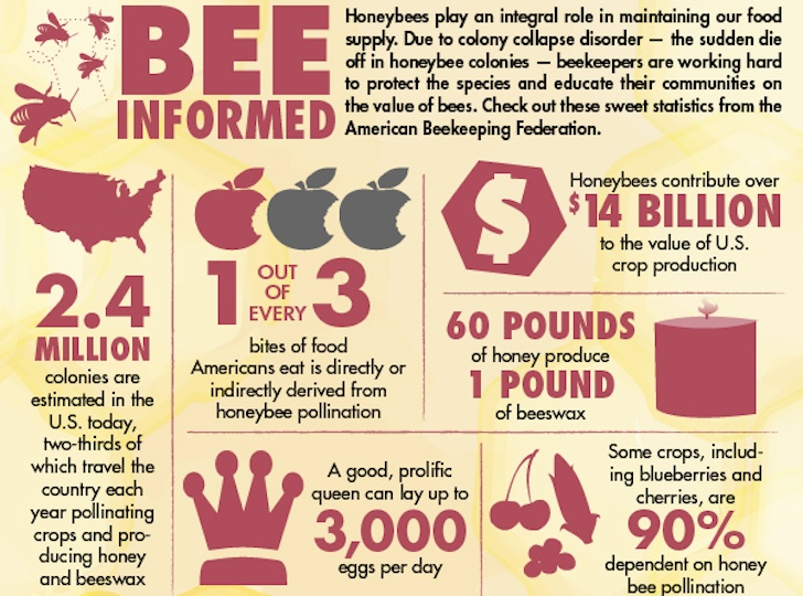 Sources: Bee Control of Pittsburgh, American Beekeeping Federation | Graphic by Mukerjee