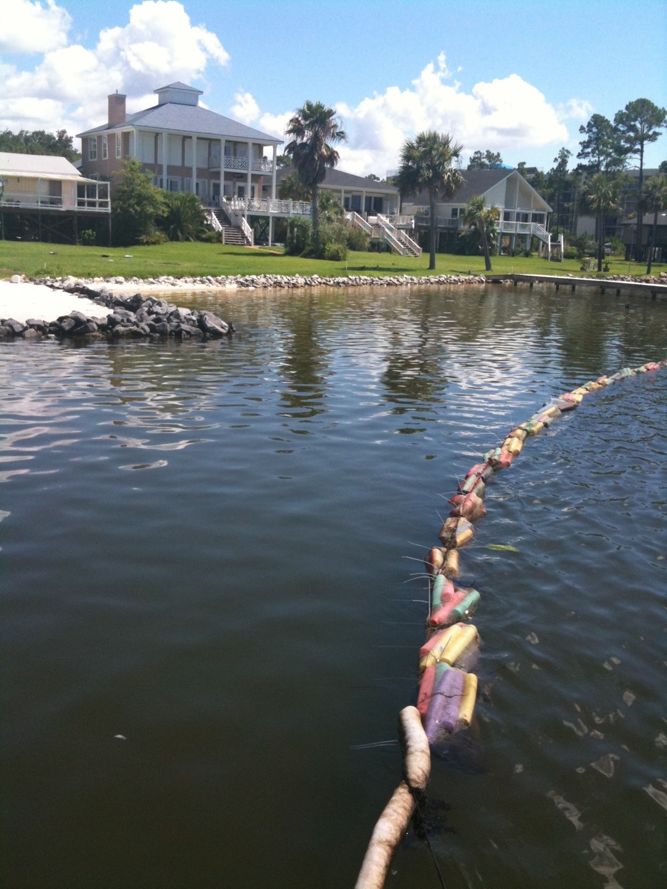 This is a picture of the hair booms in use after the BP oil spills to contain the oil and prevent contamination