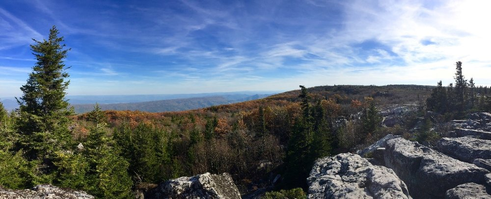 Dolly Sods, West Virginia- Hannah Daniels