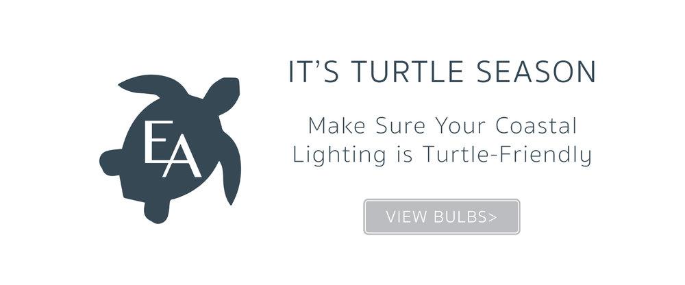 TurtleBulb_Slider.jpg