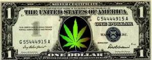 weed-money