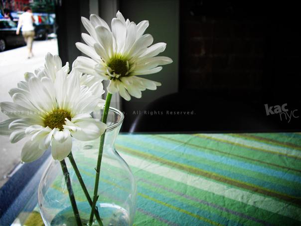 kac_090623_crepe_flowers_604